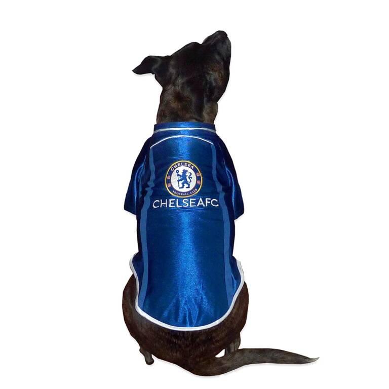 Se il Chelsea esiste dobbiamo ringraziare un cane